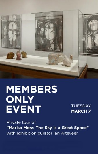 CIMA Members Only Merz