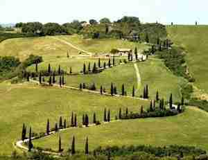 A Scenic Drive in Tuscany