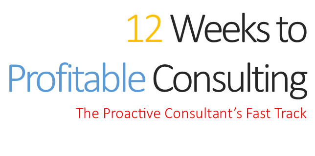 12 Weeks to Profitable Consulting free download