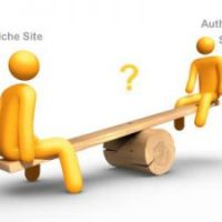 What is niche website and importance of niche sites