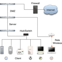 Examples and types of networks