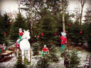 Elf Playground