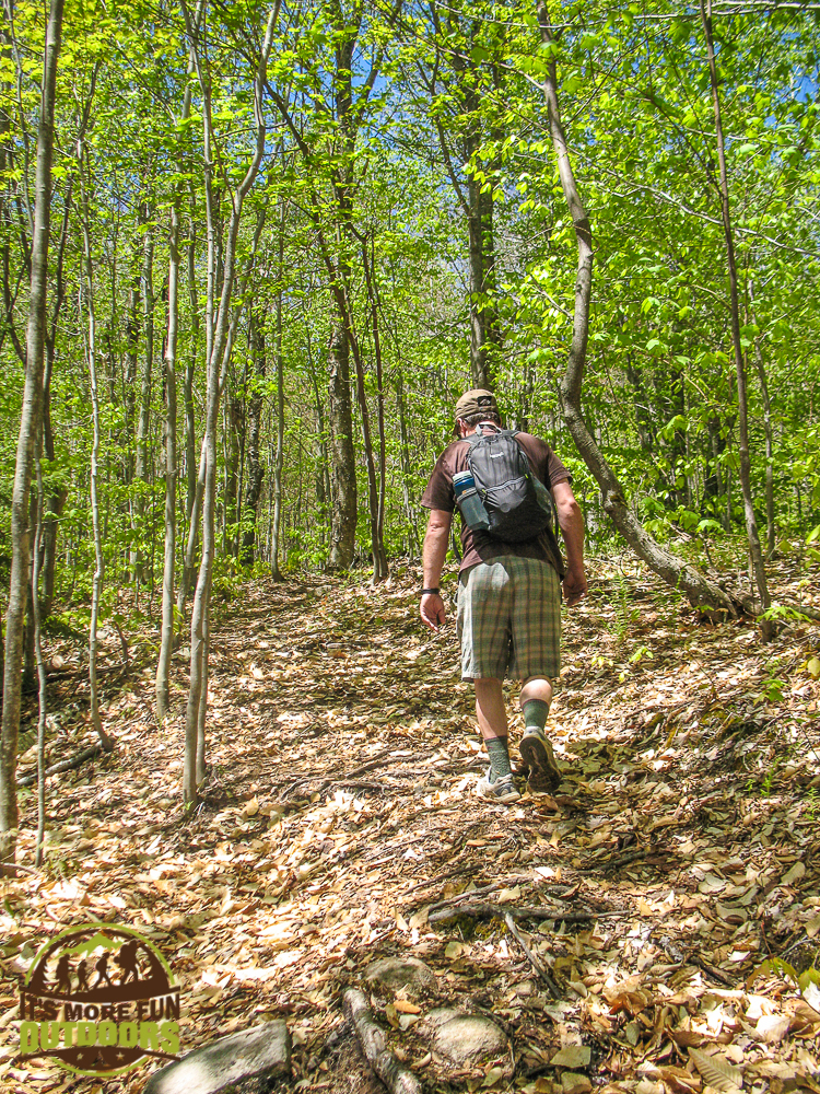 The 1.2-mile Hitchins Pond Overlook trail passes through some very young forest area. It gets a little steep and has switchbacks but soon levels out at the ridge. 2015 BOG RIVER FLOW Hike, Paddle, Camp!