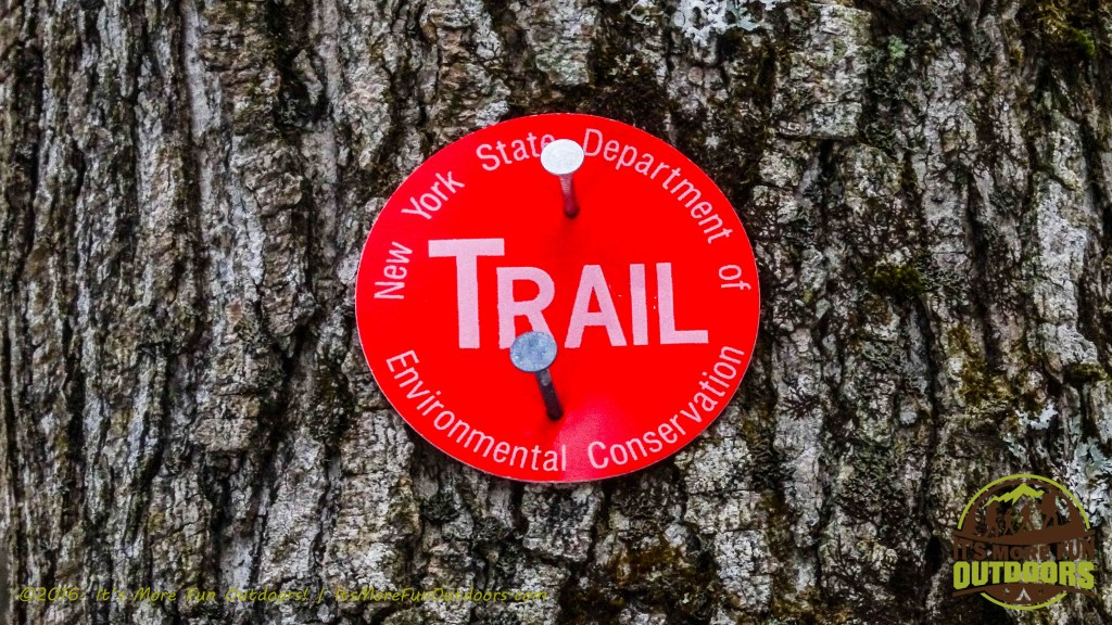 I took the red trail out and back, five miles total. February 5, 2016 Black Mountain: My First SOLO Winter Fire Tower Challenge Hike!
