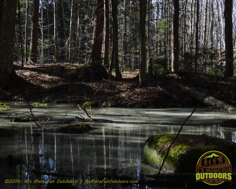 A very scenic little pool just off the trail. Owl's Head Winter Fire Tower Challenge Hike, Long Lake, NY, Adirondacks, March 13, 2016