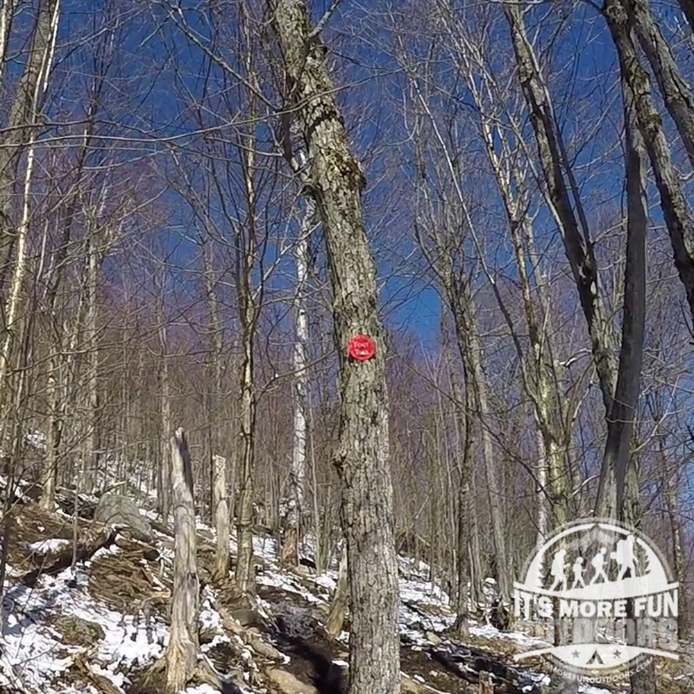 Red markers guide you to the summit! 3/19/2016: Winter hike-Azure Mountain Fire Tower, Debar Mountain Wild Forest, Adirondacks