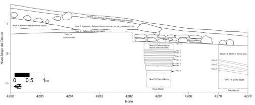 Excavation 4286, 4285 East Profile