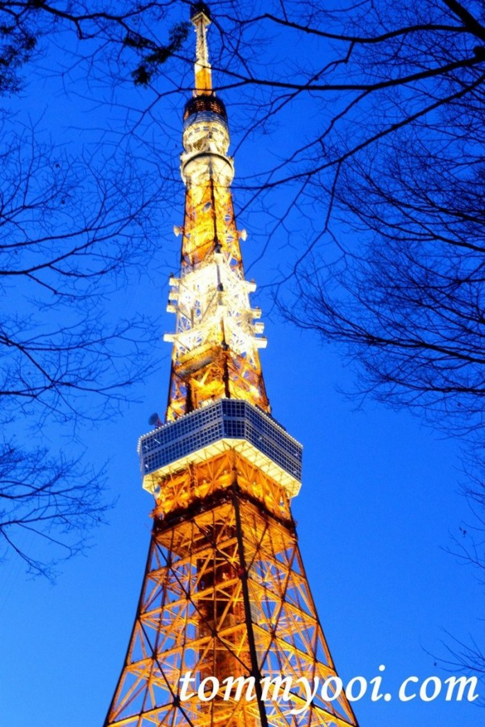 15 must visit tokyo attractions & travel guide - 14. Tokyo Tower