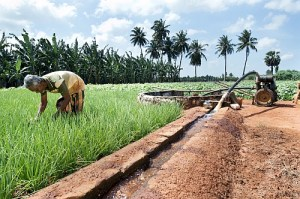 Sustainable Agricultural Water Management