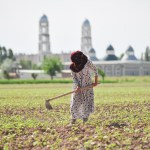 Are more women farmers a good thing in Tajikistan?