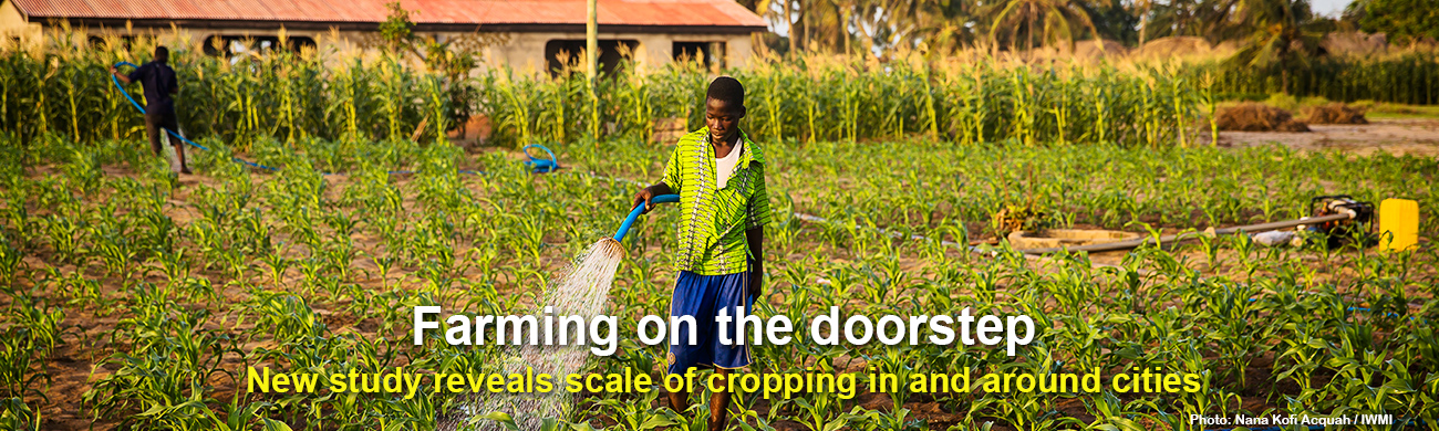 Farming-on-the-doorsteps