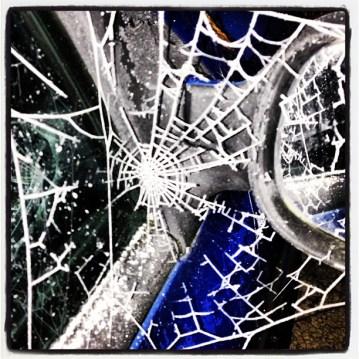 Frosty web on my wing mirror