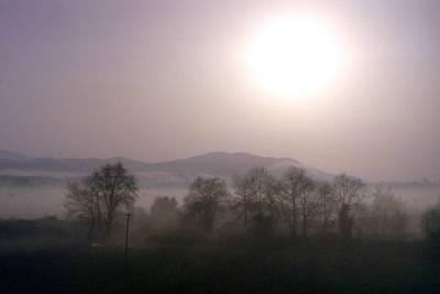 Landscape in Mist