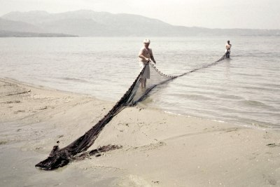 Preparing the Net