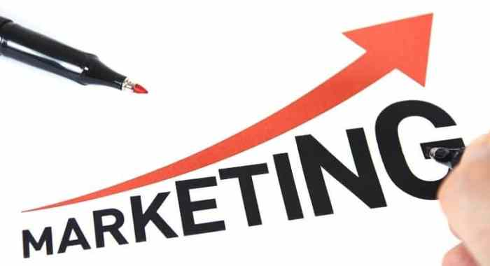6 Steps to Succeed in Affiliate Marketing