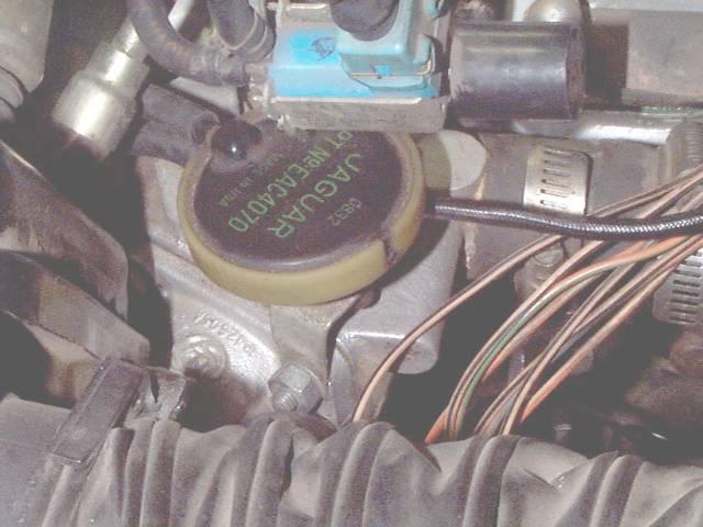 Vacuum Diagram In Addition Jaguar V12 Engine Diagram On Xjs Engine