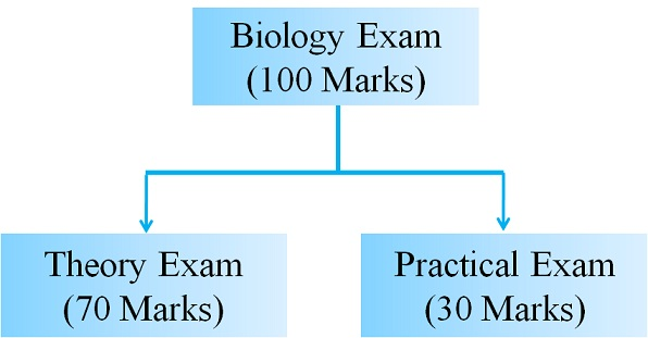 CBSE 11th Biology Exam 2018 Blueprint or Examination Pattern - copy blueprint education noida