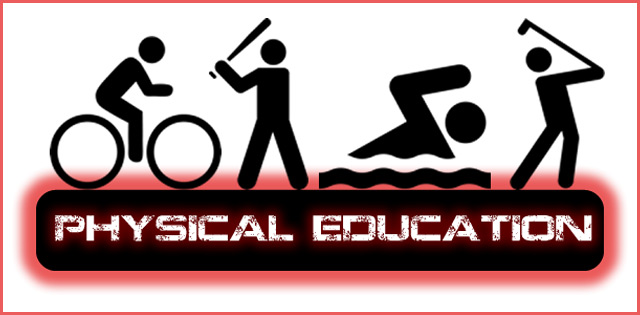 Physical Education Previous Years Papers for Class 12 CBSE - copy blueprint education noida