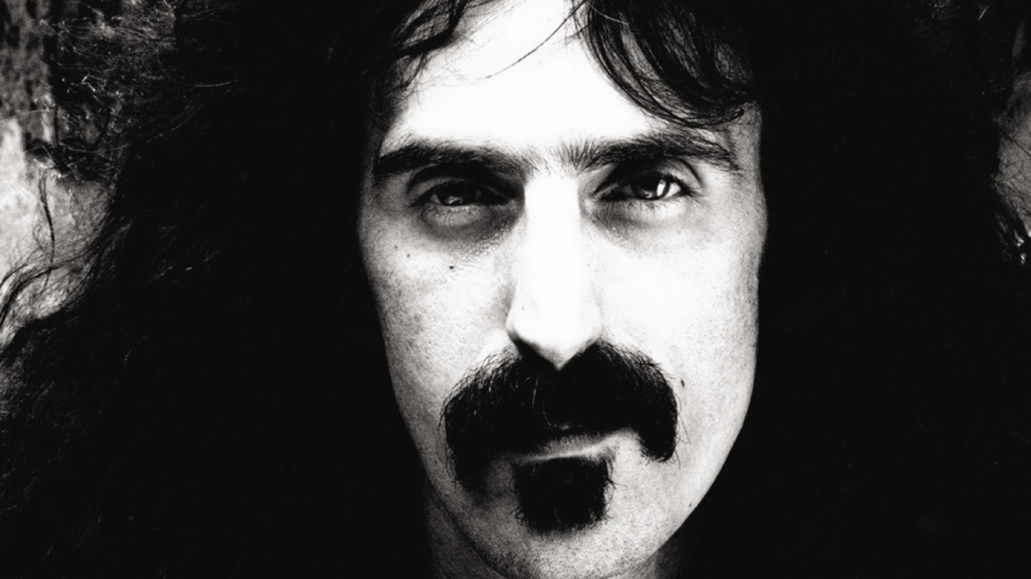 Trust Quotes Wallpaper New Installment Of Frank Zappa Road Tapes Due In May