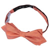 Coral Herringbone Silk Pre-Tied Pointed Bow Tie - James ...