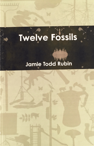 12 Fossils Cover
