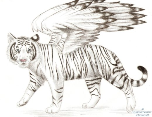 winged_white_tiger_by_grouchywolfpup