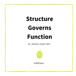 Structure Governs Function