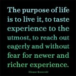purpose quote - Eleanor Roosevelt