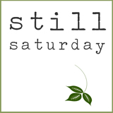 Still Saturday