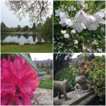 Some more iPhone photos from Mount Stewart today