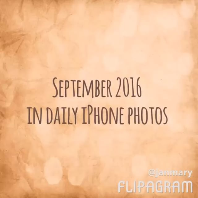 September 2016 in daily iPhone photos