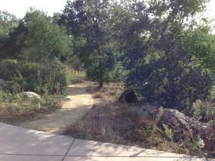 quiet_path.1280
