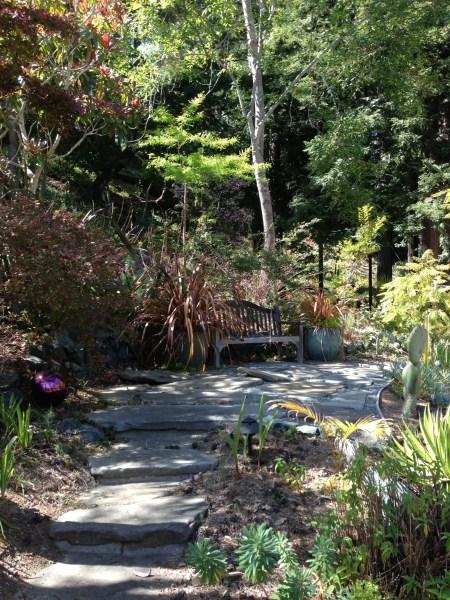 Griesbach Gardening Challenge