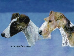 TWO TERRIERS rough &smooth