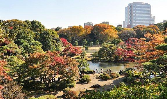 Fall Scenes For Computer Wallpaper Tokyo Travel Rikugien Garden