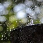 150113-snow__ALF1843_620px