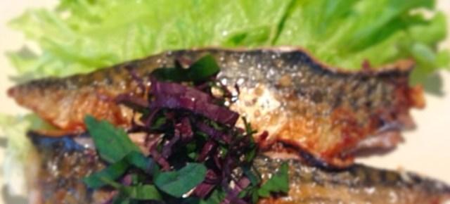 Maquereau au curry 鯖のカレー風味