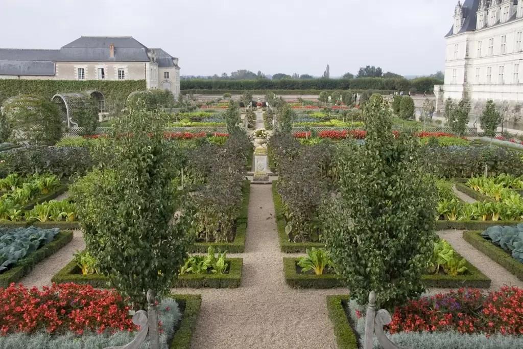 plantas bordaduras jardim plantas aromáticas ou com flores com a