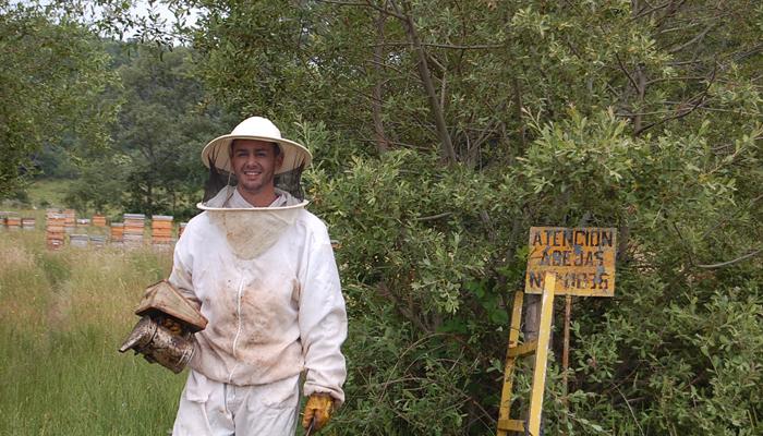 ruta-abejas-actividades-en-la-naturaleza