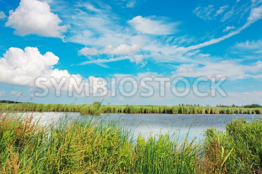 Lauwersmeer National Park - Jan Brons Stock Images