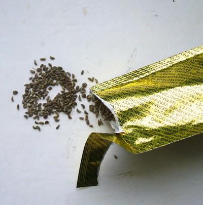 toutes les graines que vous pouvez faire germer journal des bonnes nouvelles. Black Bedroom Furniture Sets. Home Design Ideas