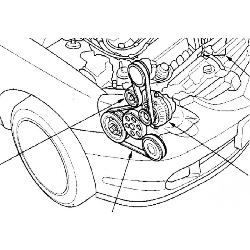honda k24 belt diagram