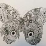 borboleta_01