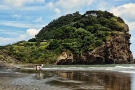 Surfing_Bethells_Beach-New_Zealand_DSC_2712_Small