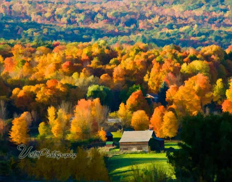 Farm house surrounded by peak fall color