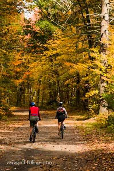 two people biking through the fall foliage near the Quabbin Reservoir