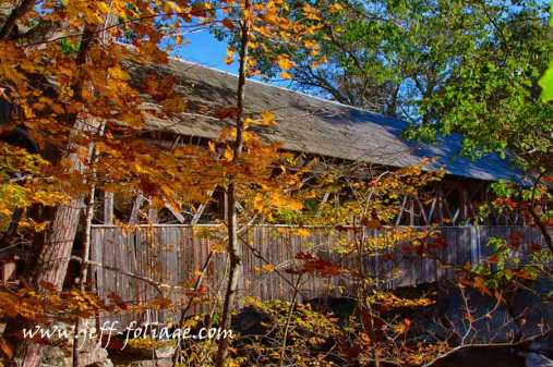 Higher angle view with the New England fall foliage against the gray wooden sides of the Sunday River covered bridge