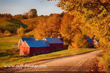 Jenne farm in fall foliage in Vermont's Reading Vermont.
