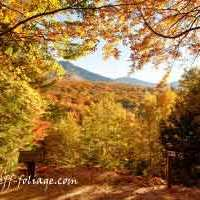Resources for planning fall foliage trips Pt2
