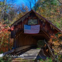 Is a fall foliage guided tour for you?